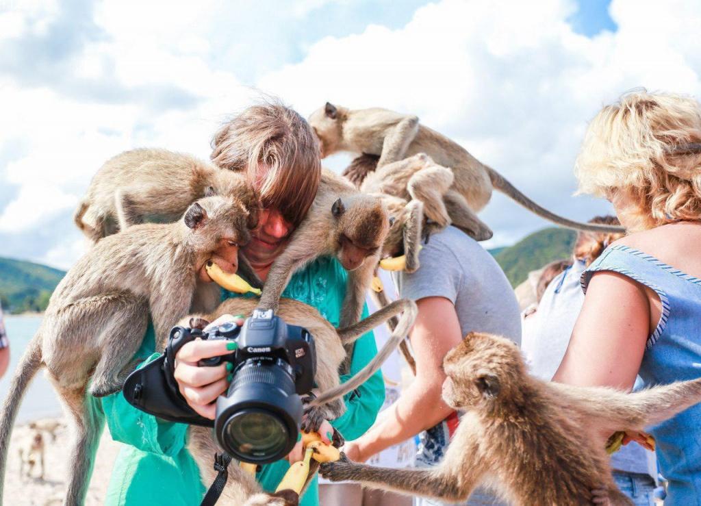 этом картинки и фото животные с людьми случии, когда женои